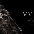 Hot Movie: The Witch (2015 film)